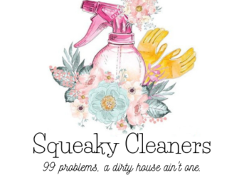 Squeaky Cleaners