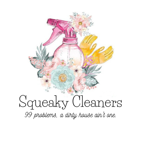 Squeaky Cleaners (2)